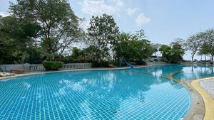 A gorgeous pool and mature trees