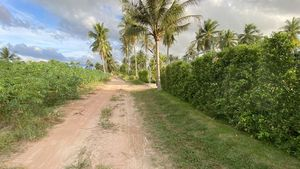 A govt. road that is concrete a few hundred meters away and that should be paved soon