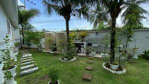 A nice stretch of garden