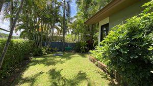 A quiet stretch of garden besides the villa