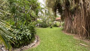 Juicy gardens and mature trees