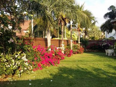 Lovely-gardens