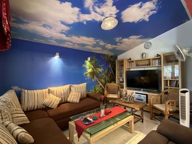The cozy lounge- and TV room
