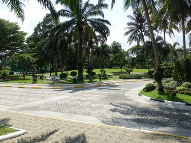 The gardens and driveway to the condominium