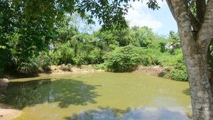 The properties fish-rich big pond