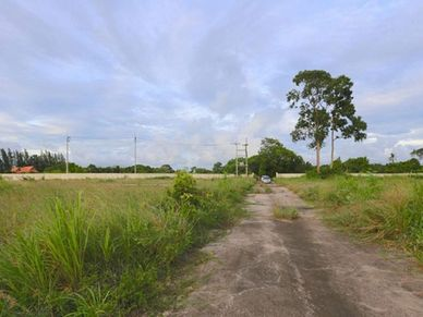 There is a long govt. road access and this road within the property