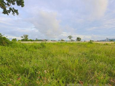 This 8 Rai plot is smoothly sloped towards the beach