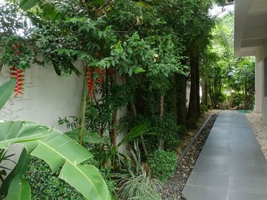 Walkways and greenery around the house
