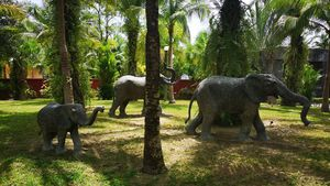 Wildlife in the tropical gardens