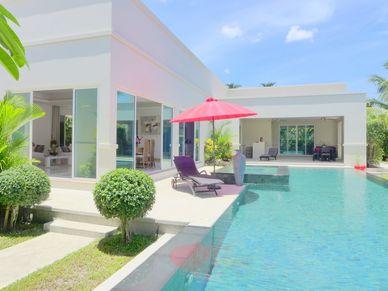 A composition of tropical colours