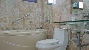 Bathroom with a Jacuzzi tub